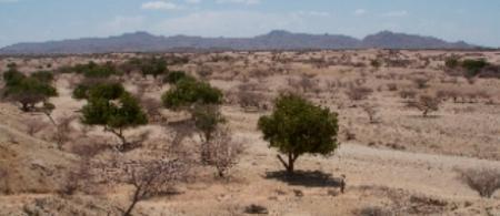 pr kenya turkana2 - climate adaptation.