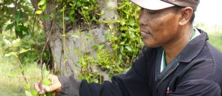 Kodro, a fish farmer in Segoro Tambak Village, East Java, Indonesia, is finding ways to protect his livelihood.