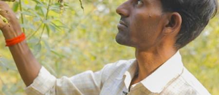 Kishan Kashinath Kondar, on his farm in Purushwadi, Ahmednagar district, Maharashtra, India. Photo credit: WOTR