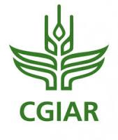 5555cd61755d2cgiar - climate adaptation.