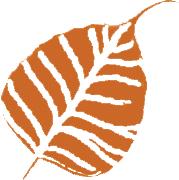 samanvaya leaf