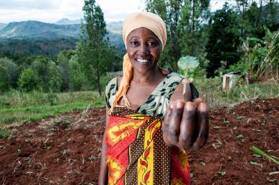 Sharifa Juma digs terraces to stop soil erosion. Georgina Smith/CIAT