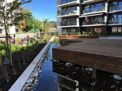 Open retention basin for stormwater in new development Ensjø, Oslo / Tharan Fergus