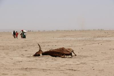 Ethiopia: EU boosts aid in response to El Niño drought. Photo by European Commission DG ECHO, via Flickr