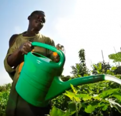 farmer with watercan