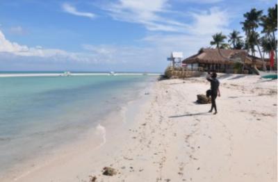 Island beach scene