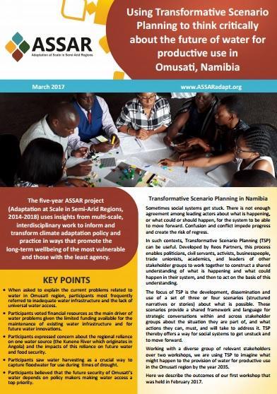 image of Namibian TSP brief