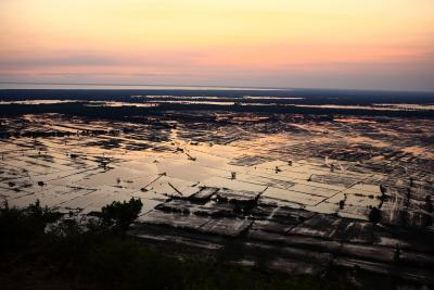 Dawn breaks over the rice paddy fields in the Mekong delta