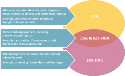 Diagram to show the crossover between Ecosystem-based Adaptation and Ecosystem-based DRR