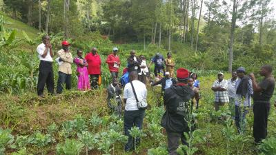 Farmers in Taita HIlls Kenya visit a CHIESA demonstration site to learn about Drip Irrigation