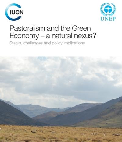 Cover of Pastoralism and the Green Economy – a natural nexus?