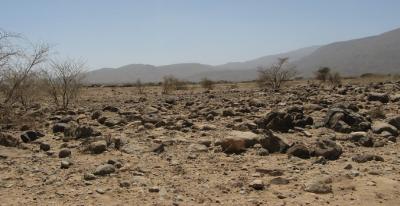 Ethiopian Drylands