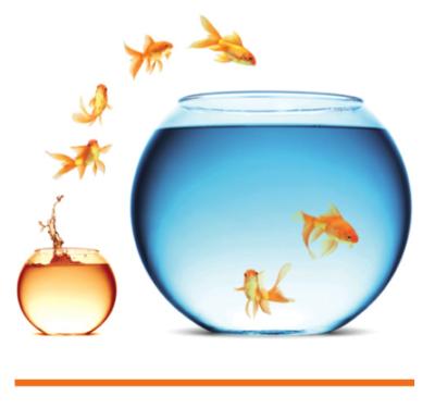 ukcip goldfish 0 - climate adaptation.