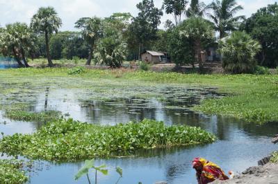 Low-lying homes in Bangladesh