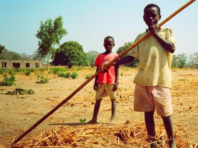 Pakalinding young farmers, The Gambia, by Gerry Popplestone. Via Flickr.