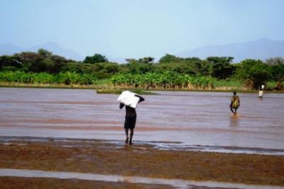 54785b85af7e1pr-kenya-lodwar-resized 0 - climate adaptation.