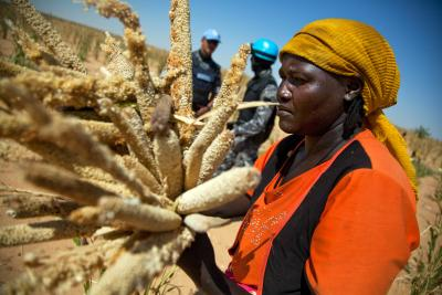 Woman collects millet in Saluma Area, Jordan, escorted by peacekeepers