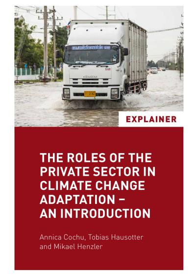 The Roles of the Private Sector in Climate Change Adaptation - an Introduction