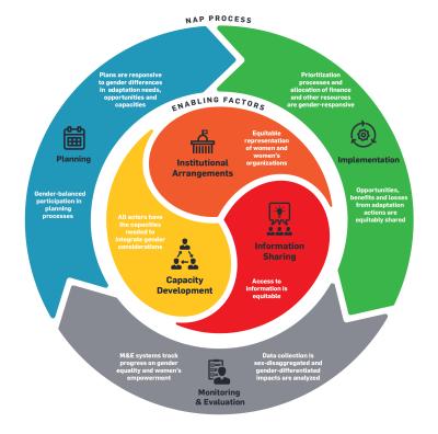 A Framework for Gender-Responsive National Adaptation Plan (NAP) Processes