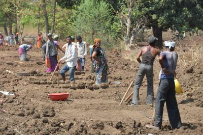 Laborers in Maharashtra