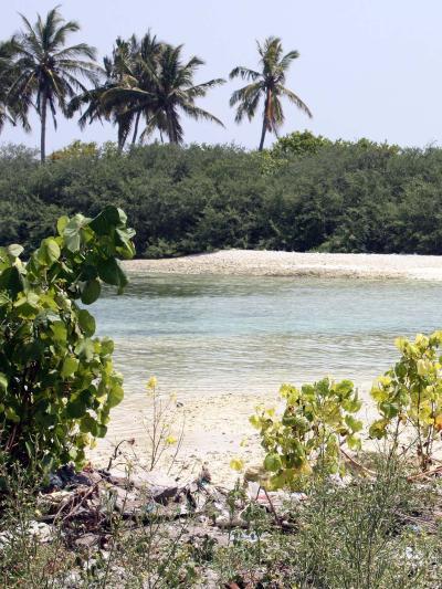 Maldives, a small island developing state.