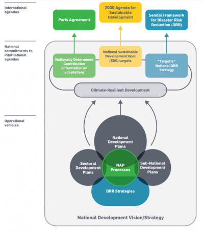 Mapping the agendas and in-country policy processes