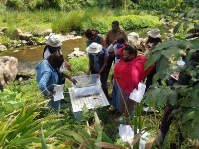 People gathered around samples from the river in the Palmiet River Rehabilitation project in Durban, South Africa. Image credit: Durban Research Action Partnership.
