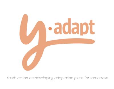 Y-Adapt