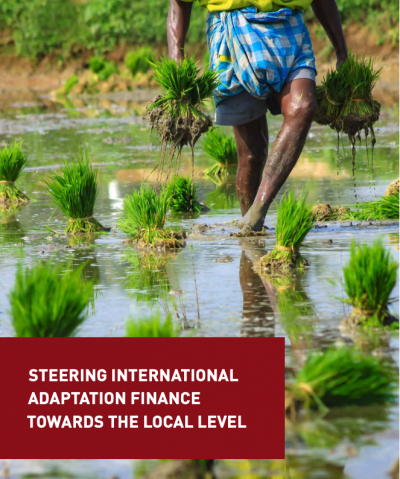 Steering International Adaptation Finance Towards the Local Level