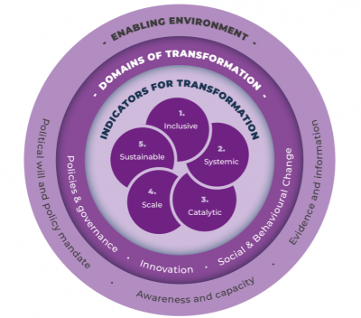 Unpacking transformation: A framework and insights from adaptation mainstreaming