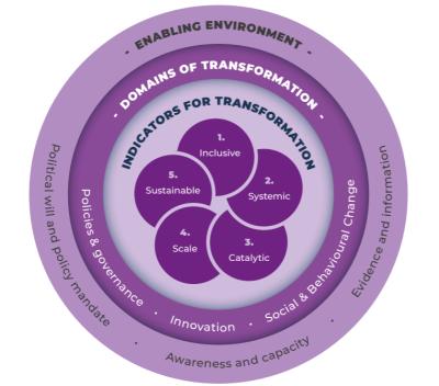 Unpacking transformation: A framework and insights from adaptation mainstreaming