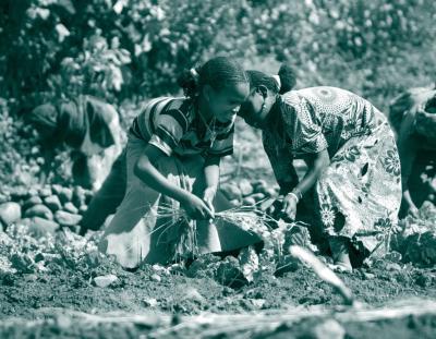 Cover photo: Thomas White, Kampala, Uganda