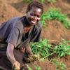 Karamoja farmer