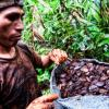 Brazil nut harvester, Peruvian Amazon, credit CIFOR.