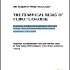 504731a664b55financial-risks-of-climate-change - climate adaptation.