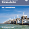 528a3b013f224real-options-analysis - climate adaptation.