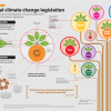 Infographic for communicators