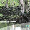 54734bd7224dbscreen-shot-2014-11-24-at-15 - climate adaptation.