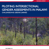 malawi-cover 1 - climate adaptation.