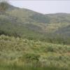 tuscany - climate adaptation.