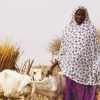 Cover image: Mariam Chaibou of Maigochi village in Niger with the two of the four goats she has received through ALP's small ruminants scheme.
