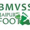 bmvss - copy - climate adaptation.