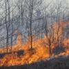 EU wildfire