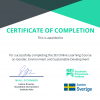 SEI Certificate of Completion for the Gender MOOC