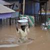 ghana - climate adaptation.
