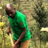 Farming in Rwanda