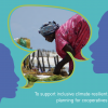 Front cover of report - female member of a seaweed cooperative engaged in harvesting her crop.