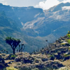 Ruwenzori mountains