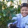 boy holding a plant