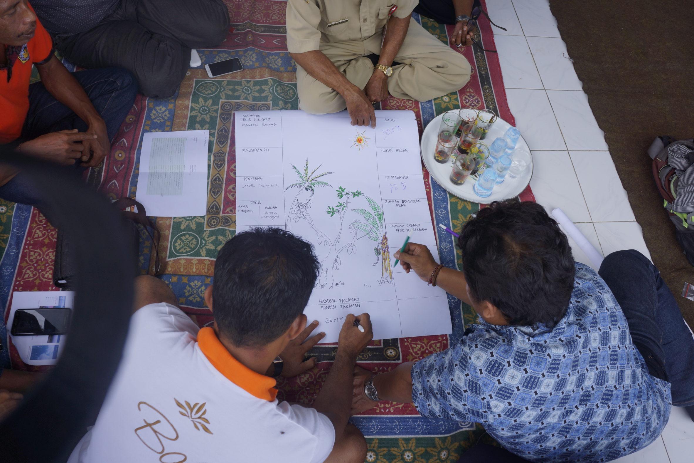 Farmers at a climate field school in Bali